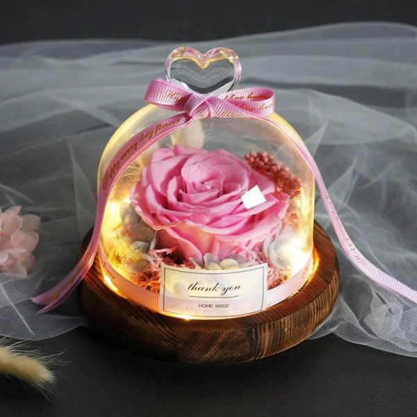 Beauty and The Beast Preserved Eternal Real Pink Rose in Glass Dome with Lights