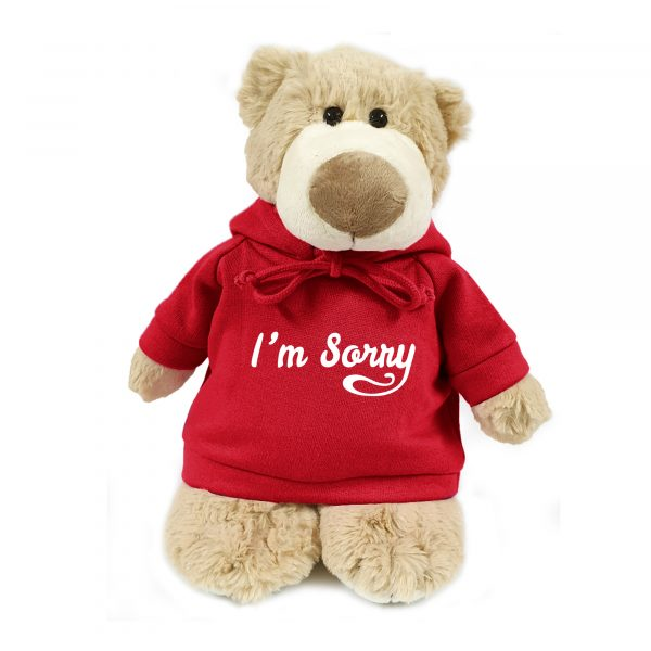 Caravaan Supersoft, cuddly mascot bear with trendy red hoodie. I'm Sorry Size 28cm. Ideal for Birthdays, celebrations, boys, girls parties. Soft and cuddly.